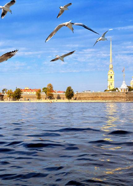 Научно-просветительский семинар Доктора Коновалова в Санкт-Петербурге